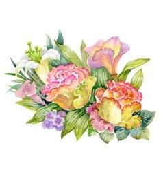 Watercolor Summer Garden Roses Blooming Flower on vector image vector image