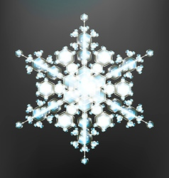Beautiful Snowflake Icon vector image