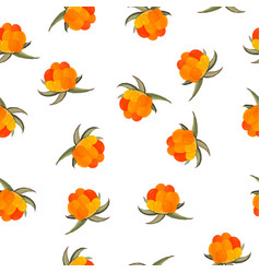 Fresh cloudberry background whole forest berries vector