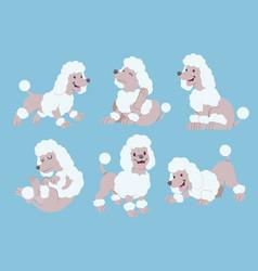 poodle cartoon set vector image