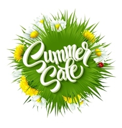 Summer sale lettering background with summer vector
