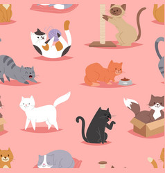 different cats kitty play defferent pose character vector image