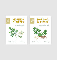 Bundle labels with miracle tree or moringa vector