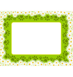 floral chamomiles frame with paw prints vector image