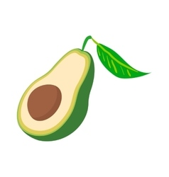 Half of avocado icon cartoon style vector