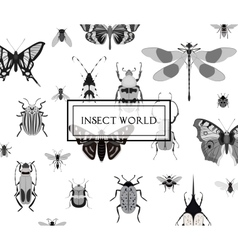 Monochrome butterfly and bug seamless pattern vector
