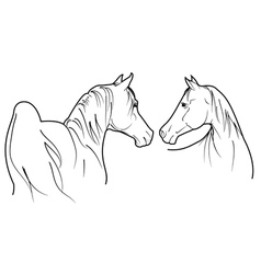 pair of horses vector image vector image