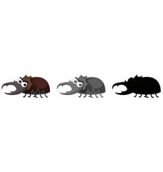 set of beetle character vector image