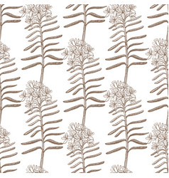 background with wild rosemary vector image vector image