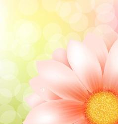 Gerber Background vector image vector image