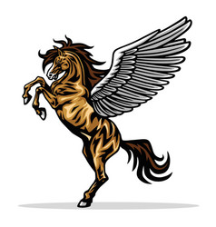Angry pegasus flying horse majestic pegasus vector