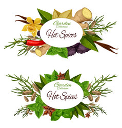 Condiments or seasoning icons of hot spices vector