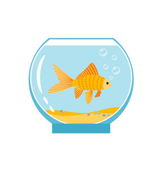 Gold fish in small bowl isolated on white vector