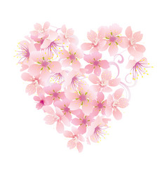 pink flowers heart isolated on white vector image