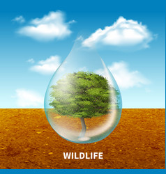 wildlife advertising poster vector image