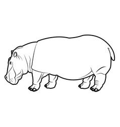 Hippo standing animal naturalist wildlife style vector