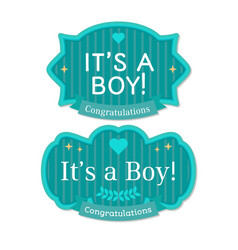 Babyborn boy badge or label vector