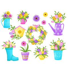 flowers collection on white background spring vector image