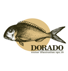 Hand drawn sketch seafood vintage vector