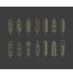 Linear feathers icons vector