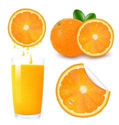 Orange Background vector image