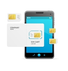 Phone Sim Card Template vector image