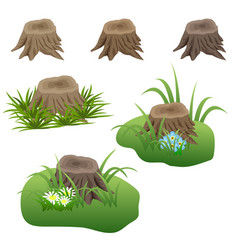 Set of tree stubs in grass and flowers for vector