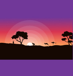 Silhouette of kangaroo at sunrise landscape vector