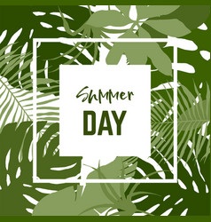 square banner with tropical leaves vector image
