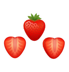 Strawberry realistic style vector