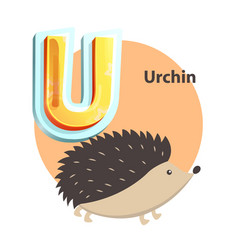 Urchin childrens alphabet vector