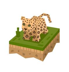 cartoon 3d isometric leopard vector image vector image
