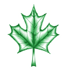 decorative ornament maple leaf vector image