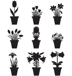 flower pot black vector image