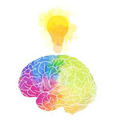human brain with rainbow watercolor splashes and a vector image