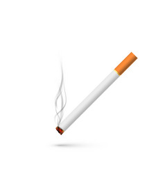 cigarette with smoke in realistic style isolated vector image