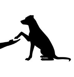 Dog as a friend vector