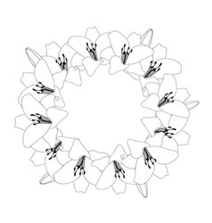 lily wreath outline vector image