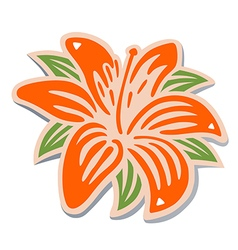 Orange lily vector image