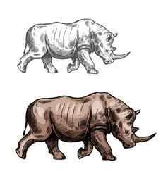 Rhinoceros sketch wild animal isolated icon vector