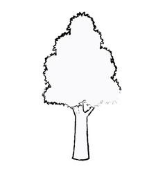 Tree plant botanic foliage sketch vector