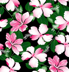 Variegated pink tropical hibiscus flowers seamless vector image vector image