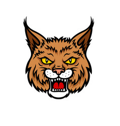 Bobcat lynx head muzzle mascot icon vector