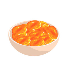 Bowl of dried apricot food item rich in proteins vector