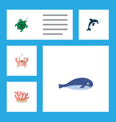 flat icon marine set of cachalot playful fish vector image