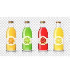 glass juice bottle with citrus label template vector image