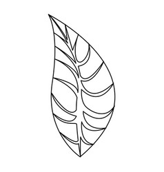 silhouette leaves icon stock vector image vector image