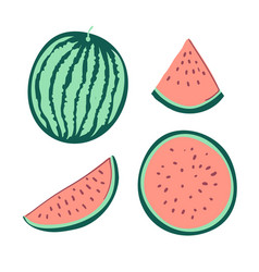 watermelon is cut set of slices of ripe vector image