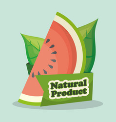 Watermelon natural product market design vector