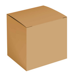 blank cardboard box mockup realistic style vector image